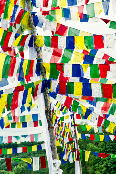 Palyul riot of Prayer flags_Q2A0404_edit
